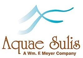 Logo for Aquae Sulis